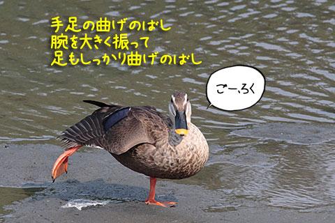 ラヂオ体操04