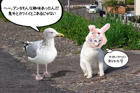 ネコ物語03