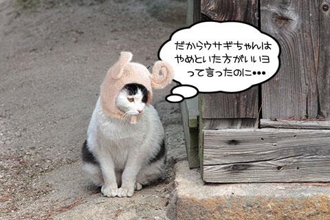 ネコ物語04