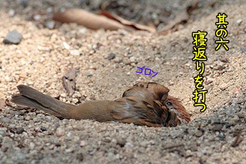 砂風呂02-07