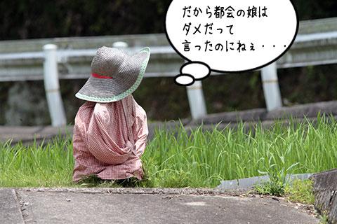 案山子02