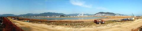 八幡川埋立地内の調整池