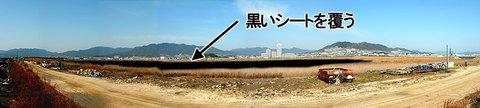 八幡川埋立地内の調整池の運命