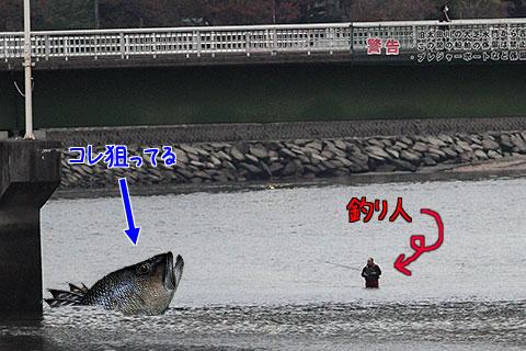 20091105tsuribito.jpg